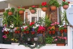 Комбинированное размещение цветов на балконе добавит креативности экстерьер квартиры.