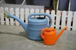 Лейка – один из инструментов, необходимых для выращивания овощей.