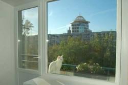 Пластиковые балконные двери - надёжная защита от шума и холодов на долгие годы.