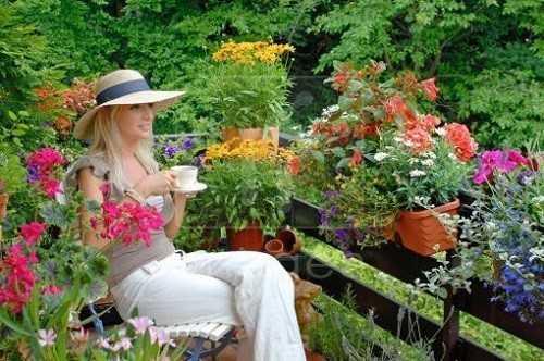 Для озеленения балкона стоит подобрать цветы и растения, которые бы цвели поочередно, и тогда, ваш балкон всегда будет ярким и благоухающим.