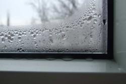 Появление конденсата на окнах  сигнализирует о опасности появления грибка
