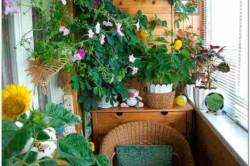 Для того чтобы ваш сад был круглый год зеленый и цвел, в одном большом горшке разместите цветы с разными сроками цветения