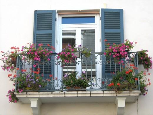 один из вариантов декорирования французского балкона цветами